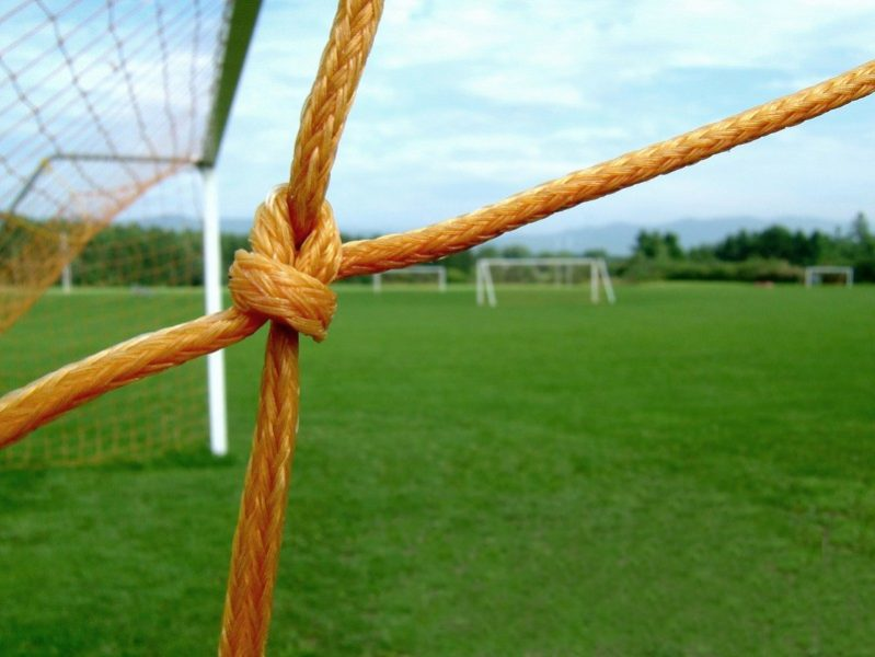 Plasa porții de fotbal