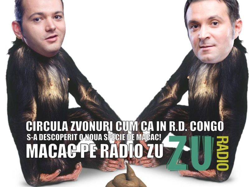 Macac pe Radio Zu